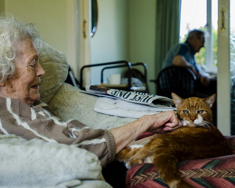 Care Network customer with cat